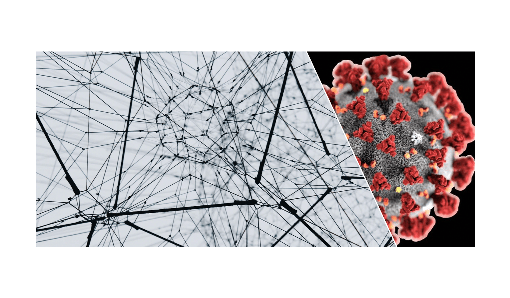 Le backtracking, la blockchain coronavirus 2020 Quantmetry